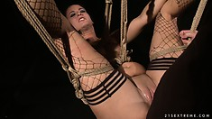 Ravenous whore is tied up and fucked by the well-endowed partner