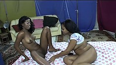 Busty black lesbian amateurs try it all with tongues, toys, and butt plugging