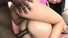 Two nasty brunettes beg a hung black stud to deeply drill their asses